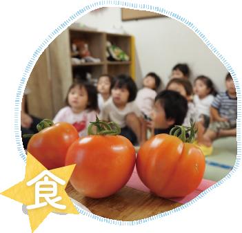素材の安全性に気をつけ、旬の野菜を たっぷり使った給食で食べることが大好きな子に!
